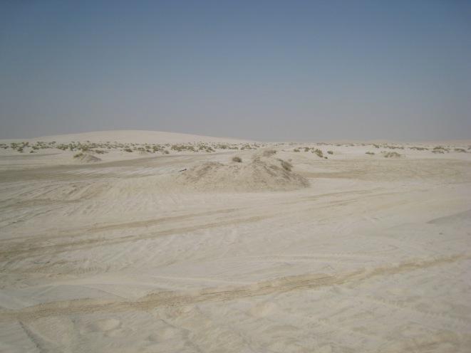 R&R Dune trip.jpg